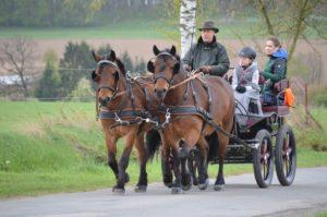 Reiten Fahren 2017 Kutschenralley 063